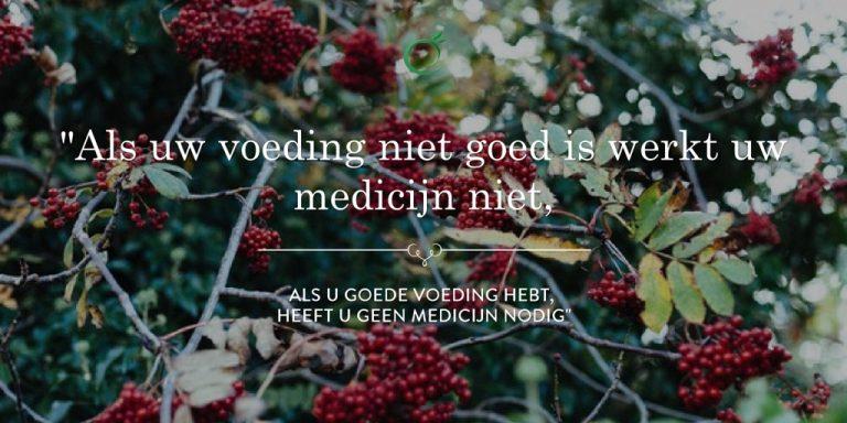 Ayur Veda, Als uw voeding niet goed is werkt uw medicijn niet, als u goede voeding hebt, heeft u geen medicijn nodig