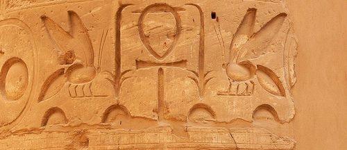 hierogliefen aloe vera