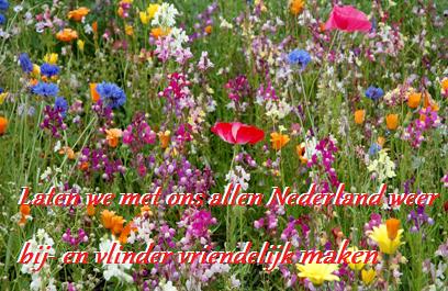 Laten we met ons allen Nederland weer bij- en vlinder vriendelijk maken