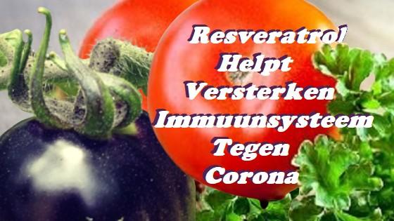 Resveratrol helpt versterken immuunsysteem tegen corona
